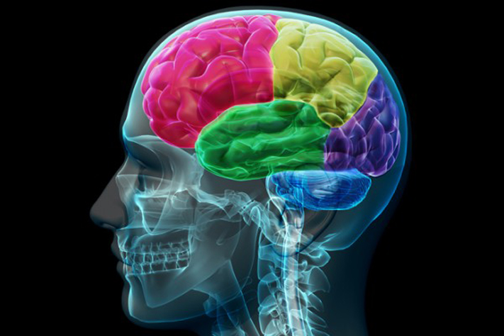 Ravenous Brain